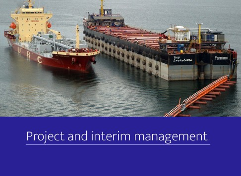 Project and interim management